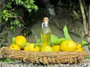 лимончелло для приготовления ликера