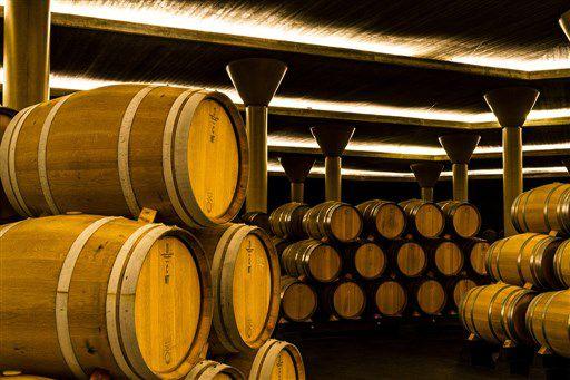 Бочки вина в Италии. Итальянское вино славится высоким качеством своих вин.