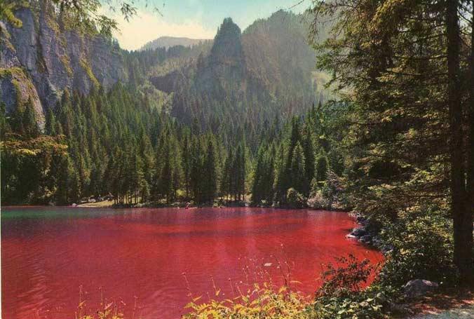Самое известное «красное» — Товел. Оно получило свое названия из-за водорослей, которые во время цветения придают воде характерный оттенок.